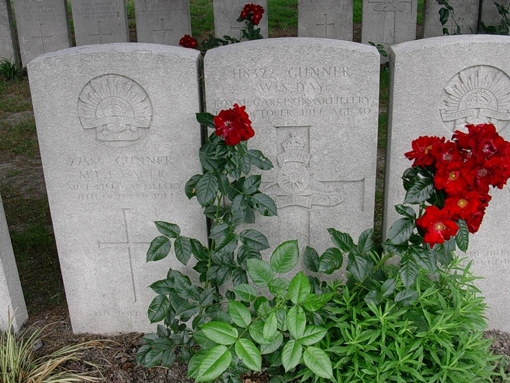 1917 - Grave Photo